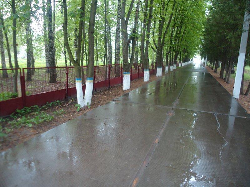 www.sanatorna.org.ua