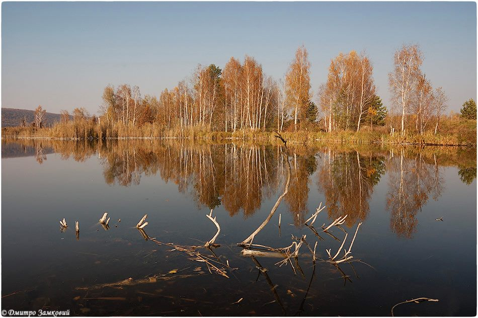 Ірдинські болота. Фото Дмитро Замковий