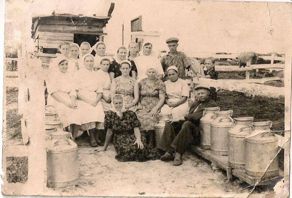 Фото з будинку Харченко Домахи Платонівни з с. Розсошинці Чигиринського району. На фермі.