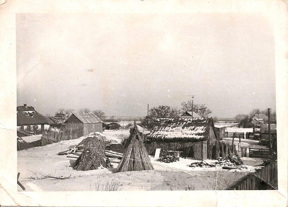 Фото з будинку Гарбузенко (Заболотньої – дівоче) Марії Іванівни (1932 р.н.) з с. Розсошинці Чигиринського району. Зимовий краєвид села.