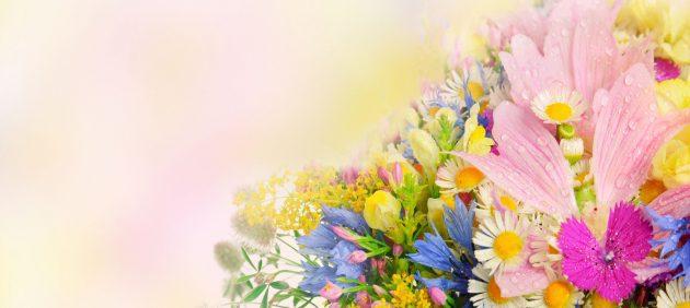 4000x2657_687539_www.ArtFile.ru_